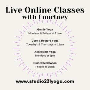 Therapeutic Yoga Online Classes